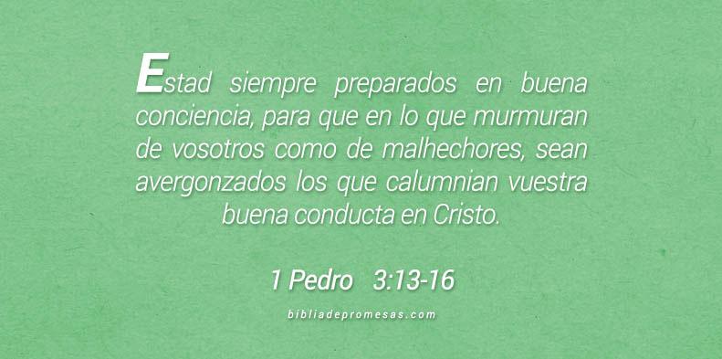 1 Pedro 13:13-16