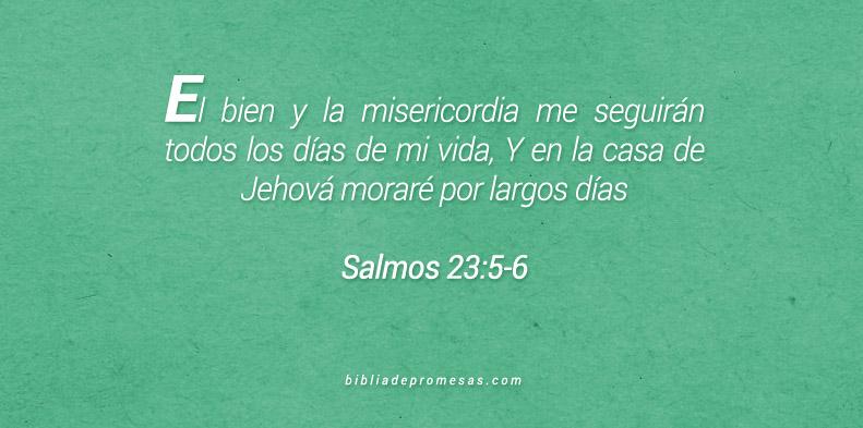 Salmos 23:5-6