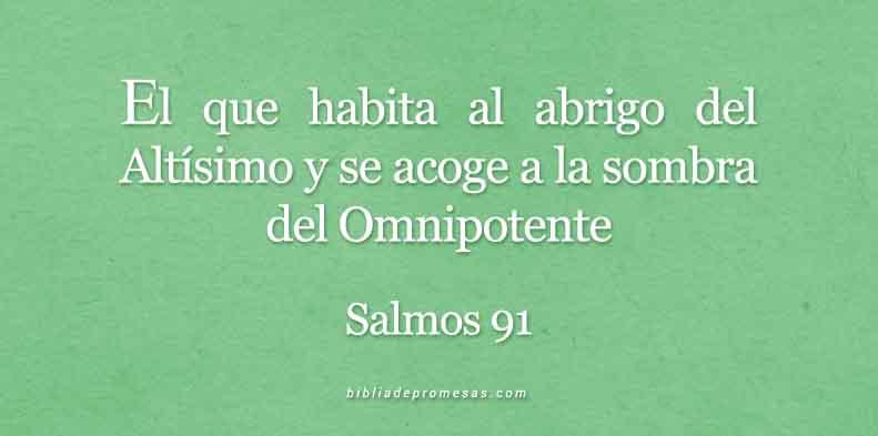 SALMOS-91-1