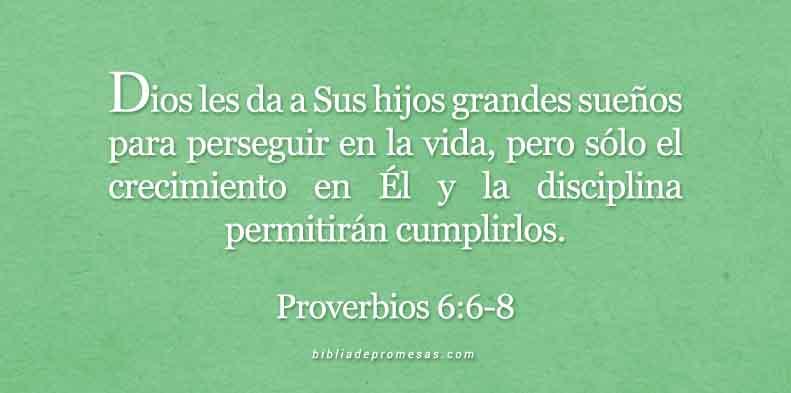 proverbios-6-6-8-dev