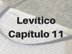 Levítico Capítulo 11