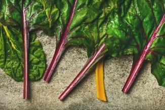 Vibrant color pure food nourishes me