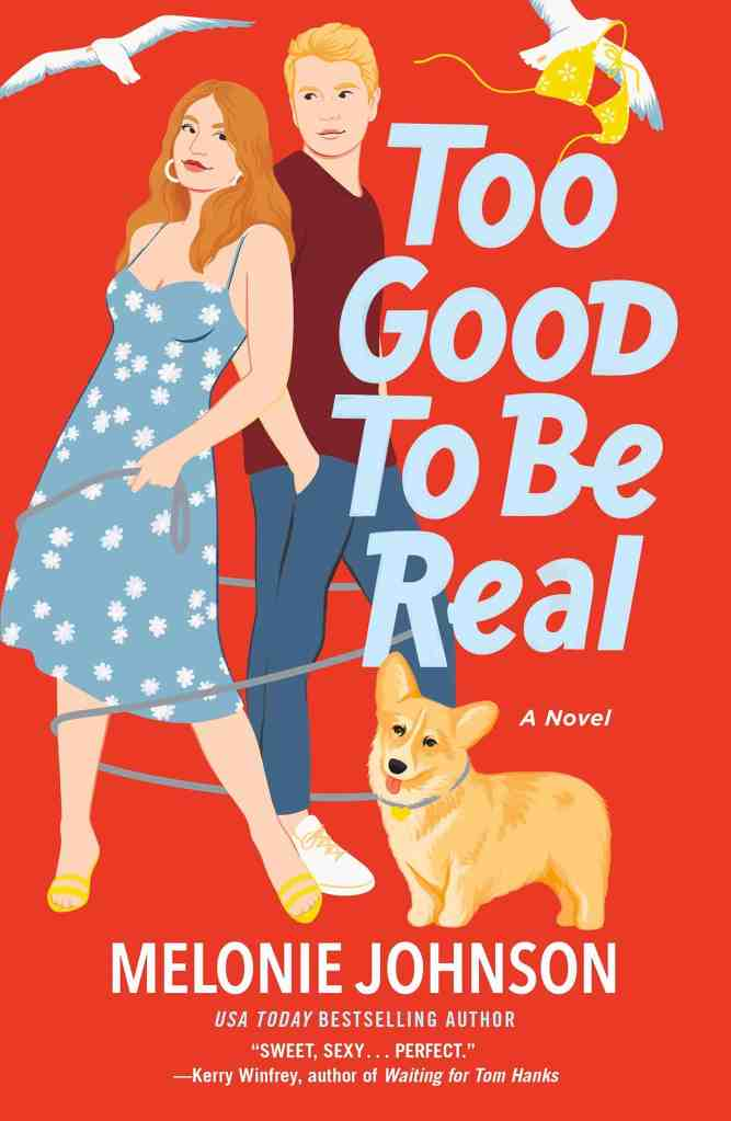Too Good to Be Real:A Novel Melonie Johnson