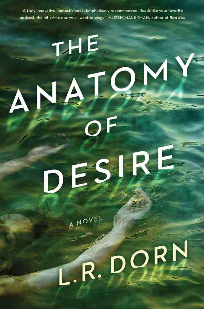 The Anatomy of Desire:A Novel L. R. Dorn