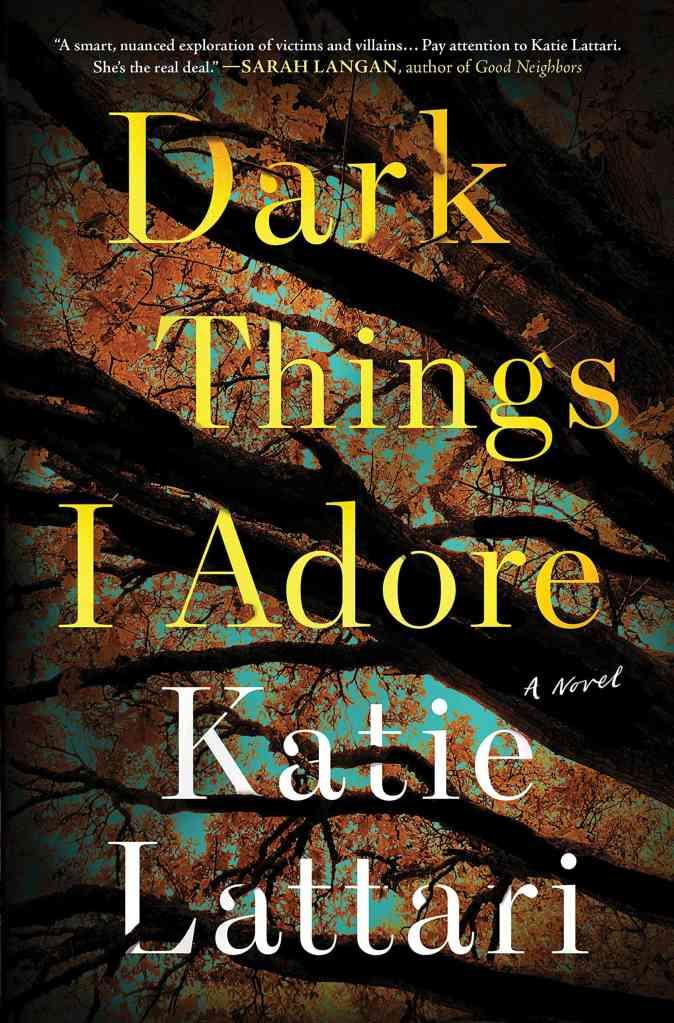 Dark Things I Adore:A Novel Katie Lattari