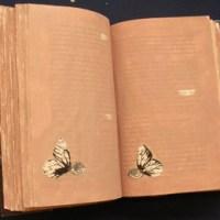 Pubblicazioni degli Archivi di Stato scaricabili gratuitamente