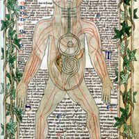 Risorse sulla medicina medievale