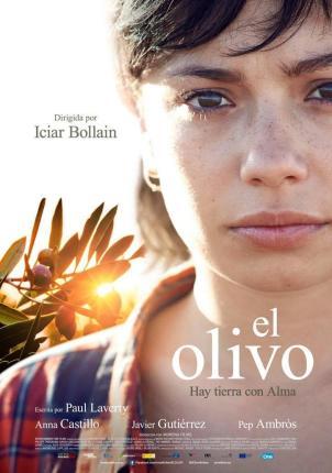 2016: Premios Goya: Mejor actriz revelación (Anna Castillo). 4 nominaciones 2016: Premios Feroz: Nominada a Mejor actriz (Anna Castillo)