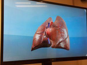 Ett hjärta på 3D-tv