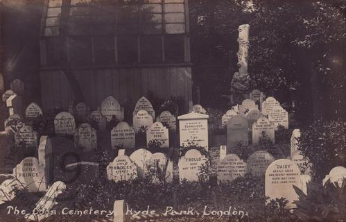 Peculiar Cat funerals in the Victorian Hyde Park Pet Cemetery