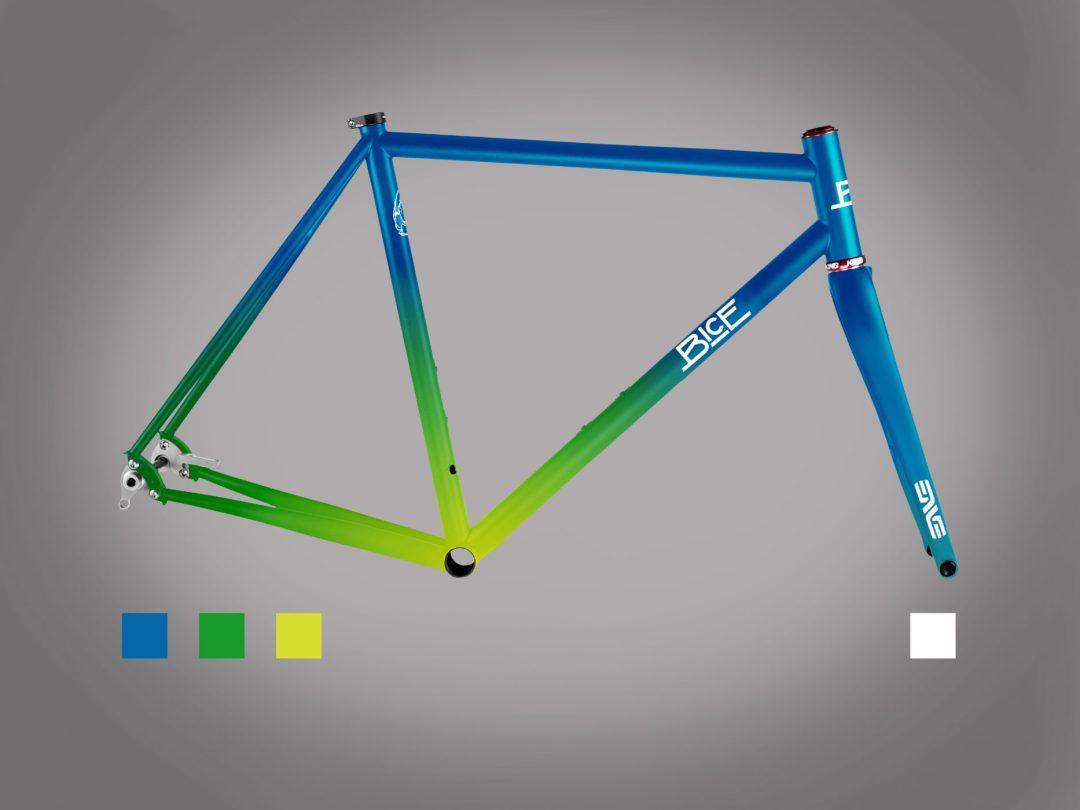 Custom Painted Frame Bice Bicycles