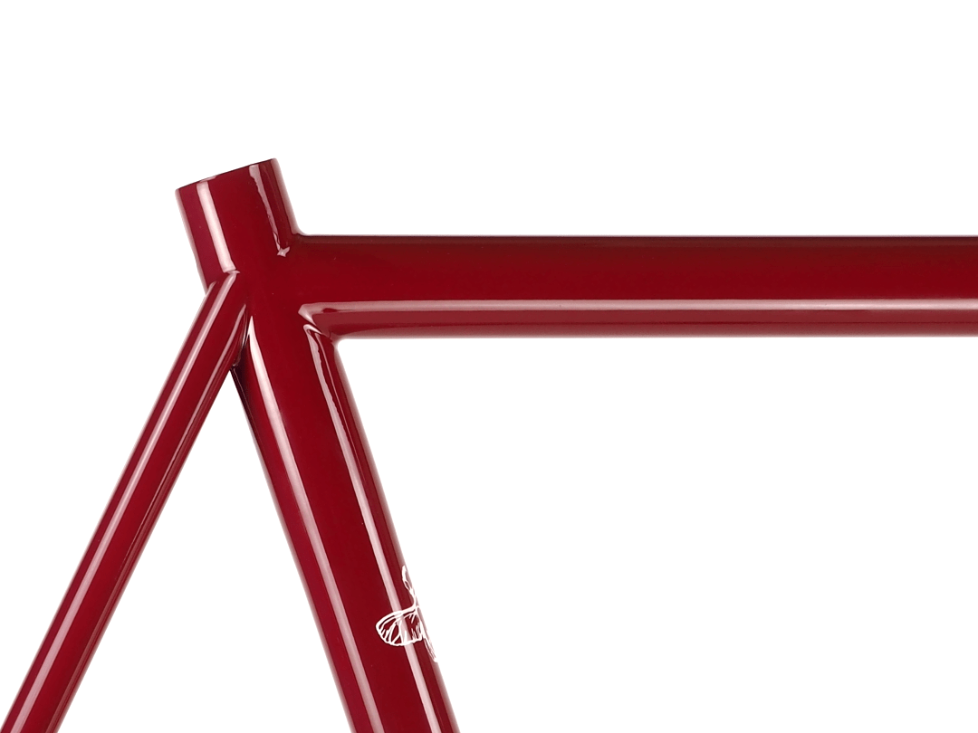 Dorian Endurance Road Bicycles - Bice Bicycles Custom Steel Frames