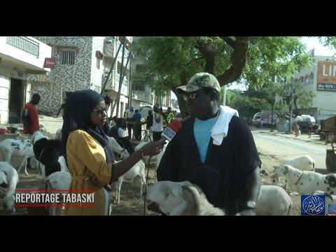 Reportage waccayu Tabaski  2020 Bichri TV