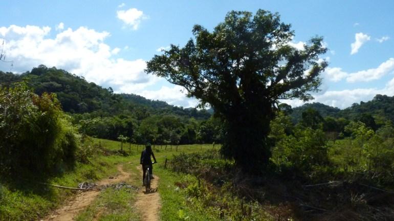 Trecho plano, lindo e muito bom pra pedalar