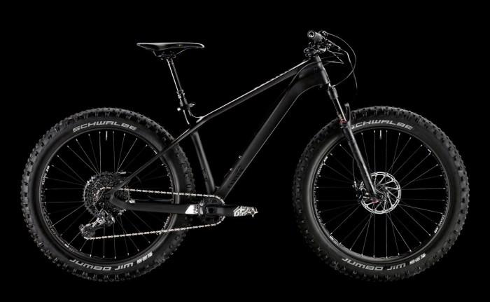 fat-bike-canyon-dude-2018