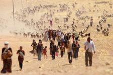 Tarp pabėgėlių – šventa šeimyna