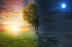 Reformacija kaip Dievo poema