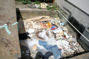 Garbage on 525 Abbott Street Property