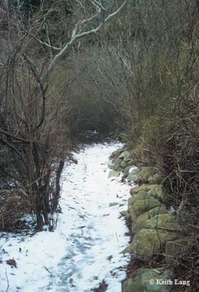 Lang-trail3