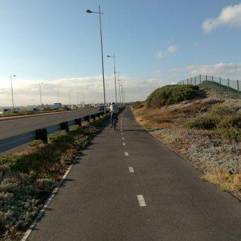 N1 cycleway