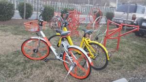 Bike Share Racks