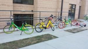 Bike Share Multiple Bikes