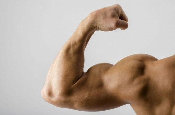 39089089_m-1-600x397 【太りたい男性必見】太る体質に変わるために覚えておきたい7つのこと