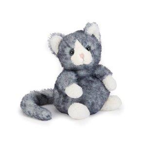 Dolly le chaton gris