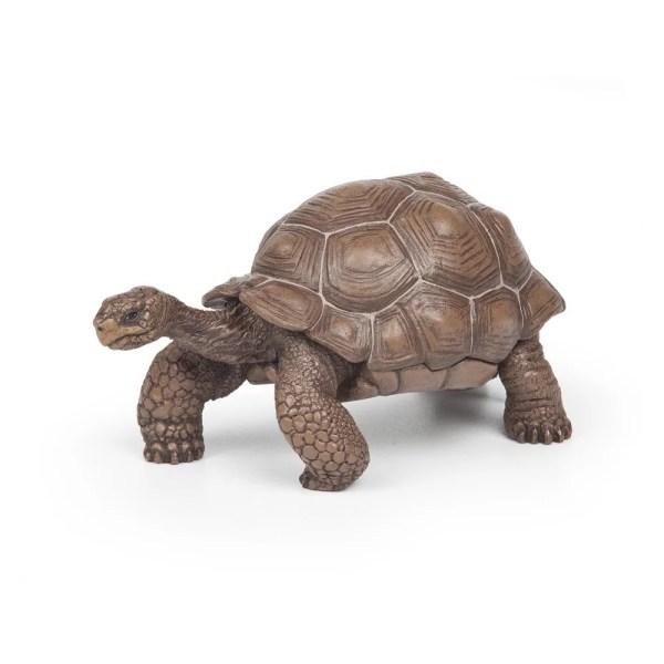 Figurine Les animaux du jardin, Tortue des Galapagos, Papo, Bidiboule
