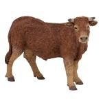 Vache Limousin