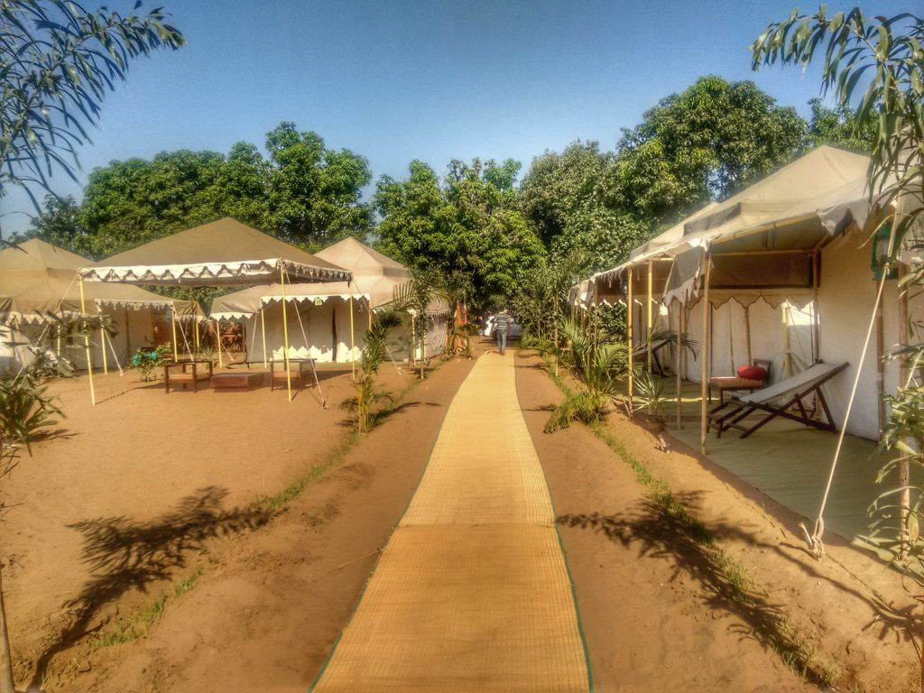 Glamping in Pushkar