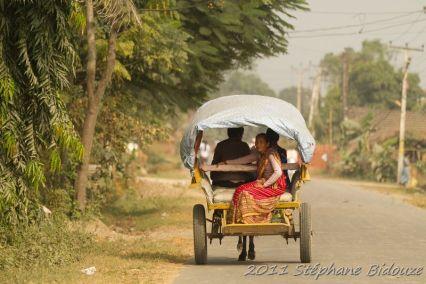 chitwan22