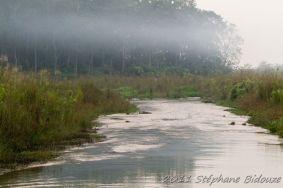 chitwan58