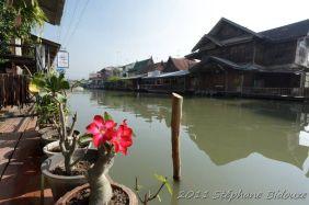 bangkok208