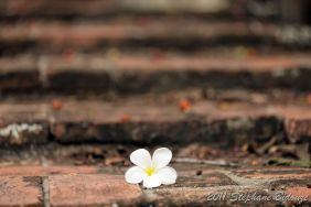 Thailande_6759
