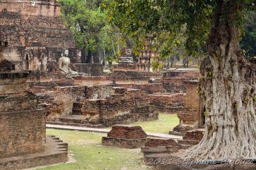thailande_5279