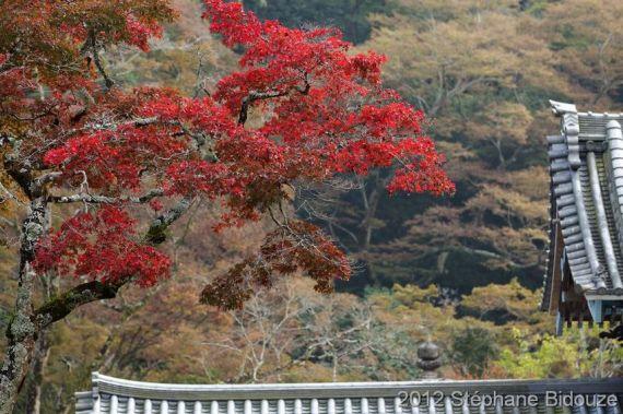 Japon 2011_00336
