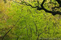 Japon 2011_00345