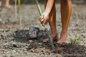 woman gardening