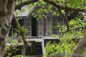 Thailande III_01118