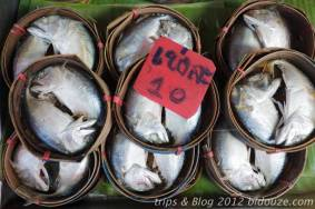 bangkok iv089