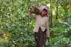 Angkor day 4 14