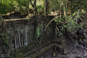 Temple in jungle