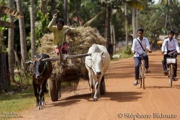 cambodge campagne 21
