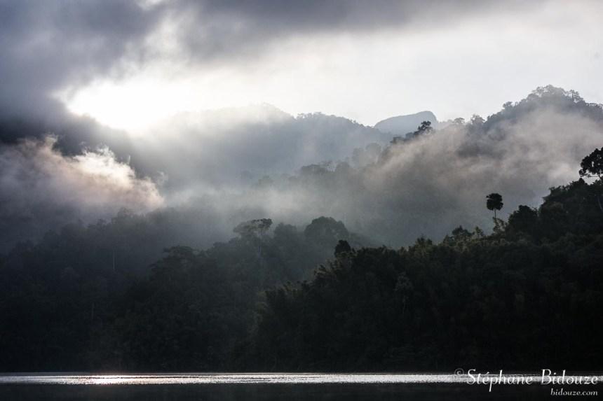 Misty lake lanscape