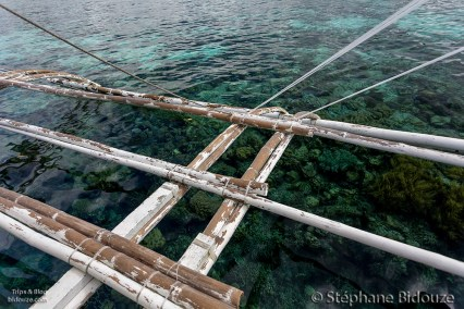 sanctuaire-marin-moalboal