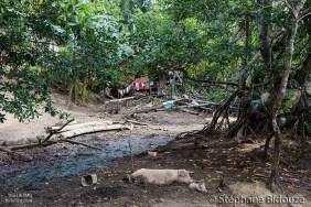 cochon-village-philippines
