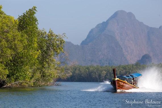 mangrove-bateau-thailande