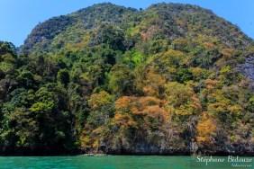 dry-season-colors-nature-thailand