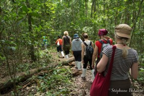 trek-jungle-khao-yai